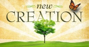 newcreation
