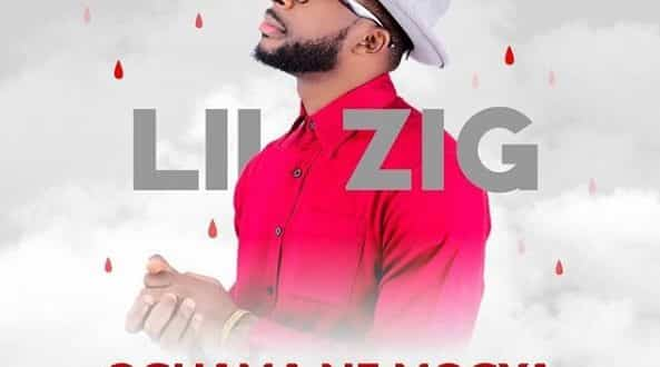 LilZig